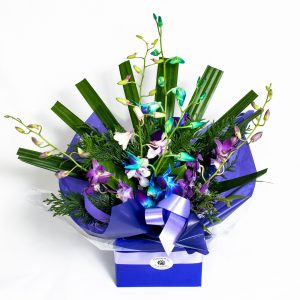 Mixed Color Orchid Box - Fresh Flowers - Flowers R Us