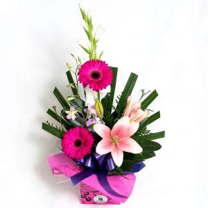 Pin & Purple Box Arrangement With Gerberas, Orchids & Lillies - Fresh Flowers - Flowers R Us