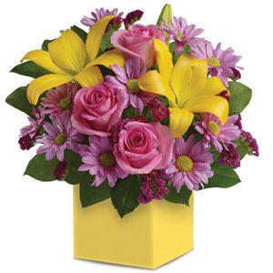 Serenade - International - Interstate - Flowers R Us