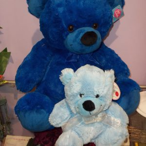 Teddy Blue Baby Boy Teddies - Teddies - Flowers R Us