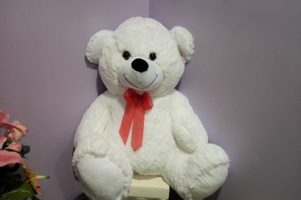 White Large Teddy - Teddies - Flowers R Us