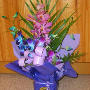 Fresh Orchid Box - Fresh Flowers - Flowers R Us