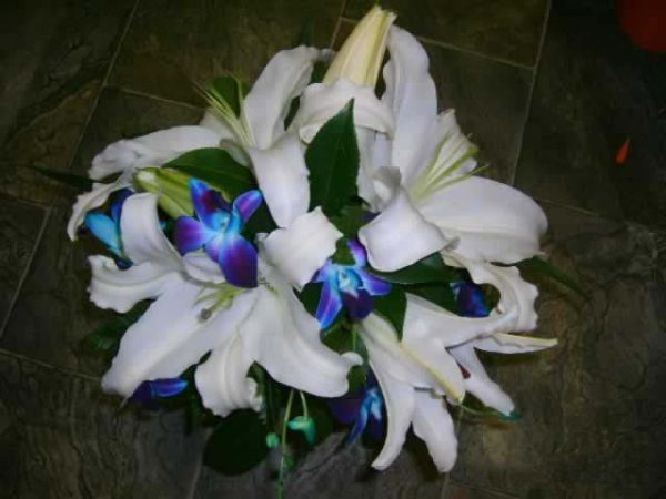Wedding Lilly & Blue Orchid Fresh - Weddings - Flowers R Us