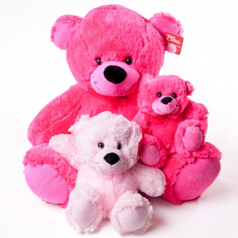 Teddies Various Colors & Sizes - Teddies - Flowers R Us - Pink