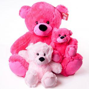 Teddies Various Colors & Sizes - Teddies - Flowers R Us - Pink
