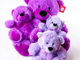 Teddies Various Colors & Sizes - Teddies - Flowers R Us - Purple