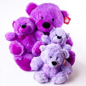 Teddies Various Colors & Sizes - Teddies - Flowers R Us - Purple