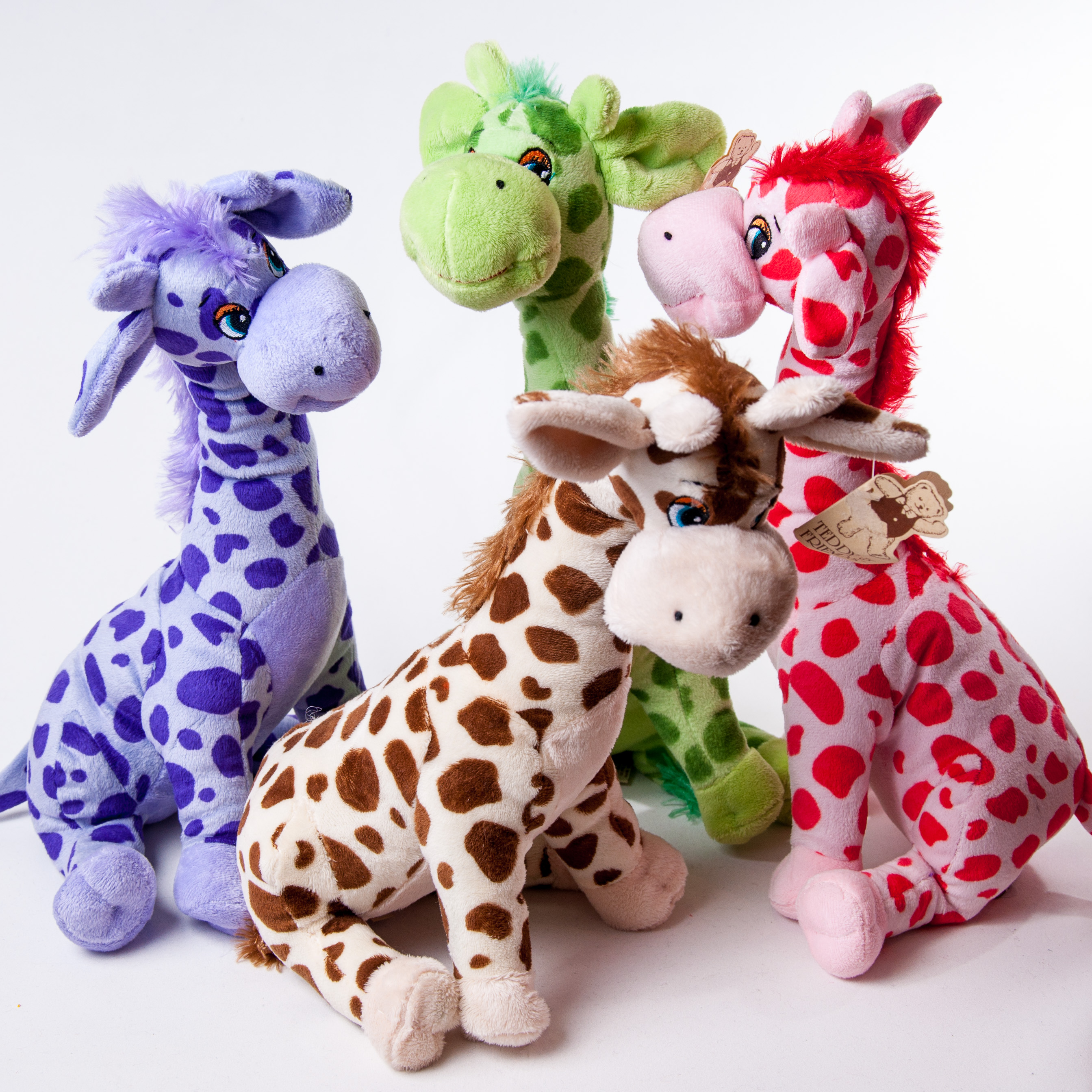 Toy Giraffes Various Colors - Teddies - Flowers R Us