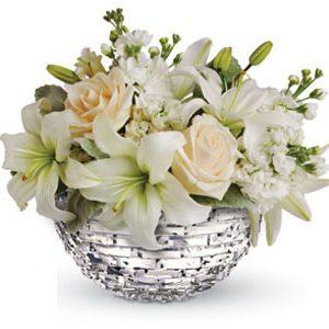 Snow Sparkle - International - Interstate - Flowers R Us