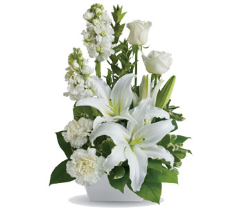 White Simplicity - International - Interstate - Flowers R Us